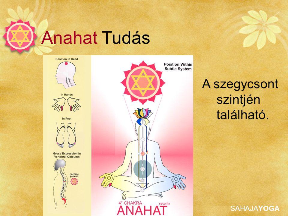 Anahat Tudás A szegycsont szintjén található.