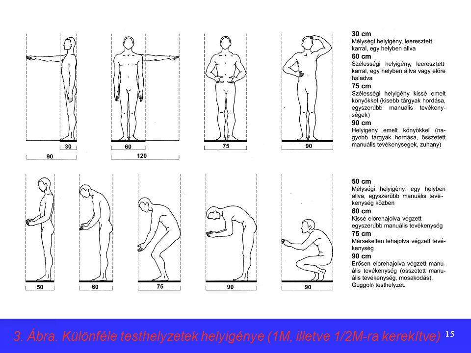 3. Ábra. Különféle testhelyzetek helyigénye (1M, illetve 1/2M-ra kerekítve)