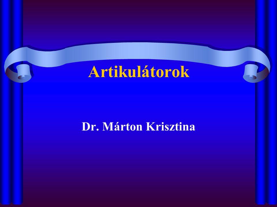 Artikulátorok Dr. Márton Krisztina
