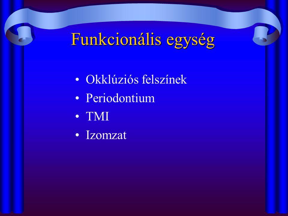 Funkcionális egység Okklúziós felszínek Periodontium TMI Izomzat