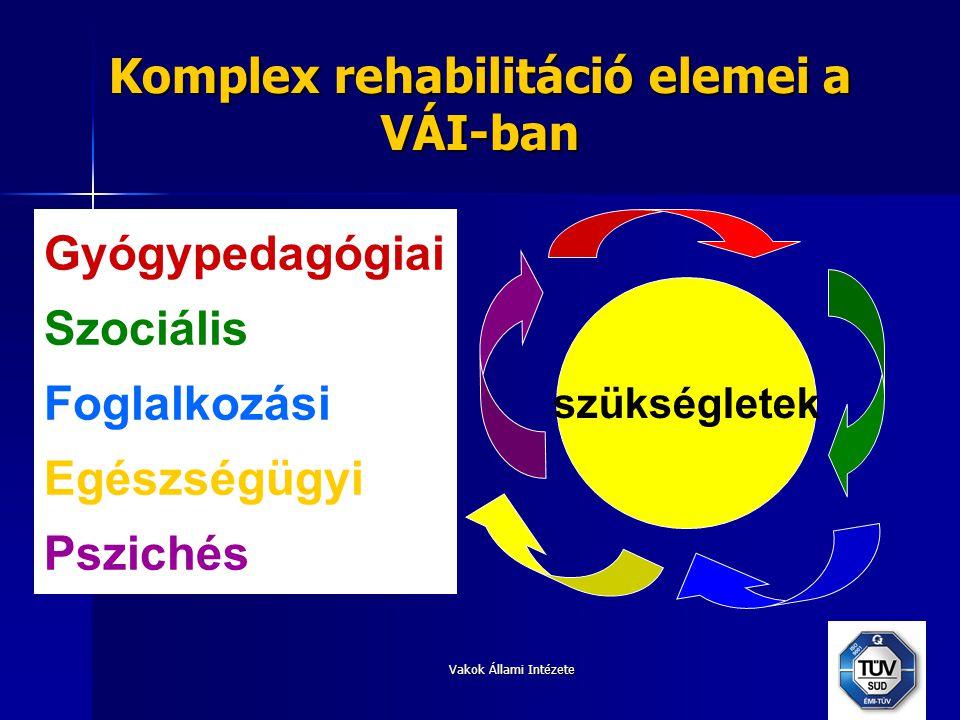 Komplex rehabilitáció elemei a VÁI-ban