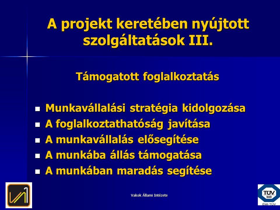 A projekt keretében nyújtott szolgáltatások III.