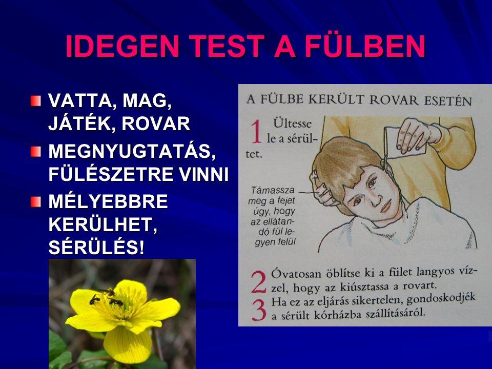 IDEGEN TEST A FÜLBEN VATTA, MAG, JÁTÉK, ROVAR