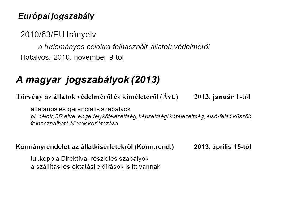 A magyar jogszabályok (2013)