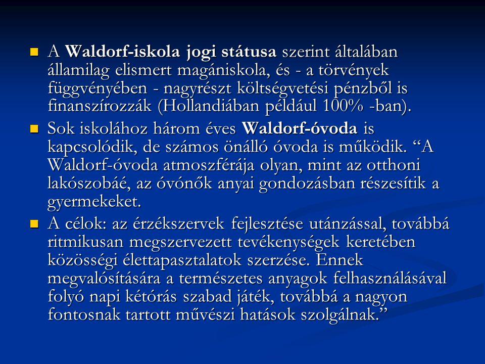 A Waldorf-iskola jogi státusa szerint általában államilag elismert magániskola, és - a törvények függvényében - nagyrészt költségvetési pénzből is finanszírozzák (Hollandiában például 100% -ban).