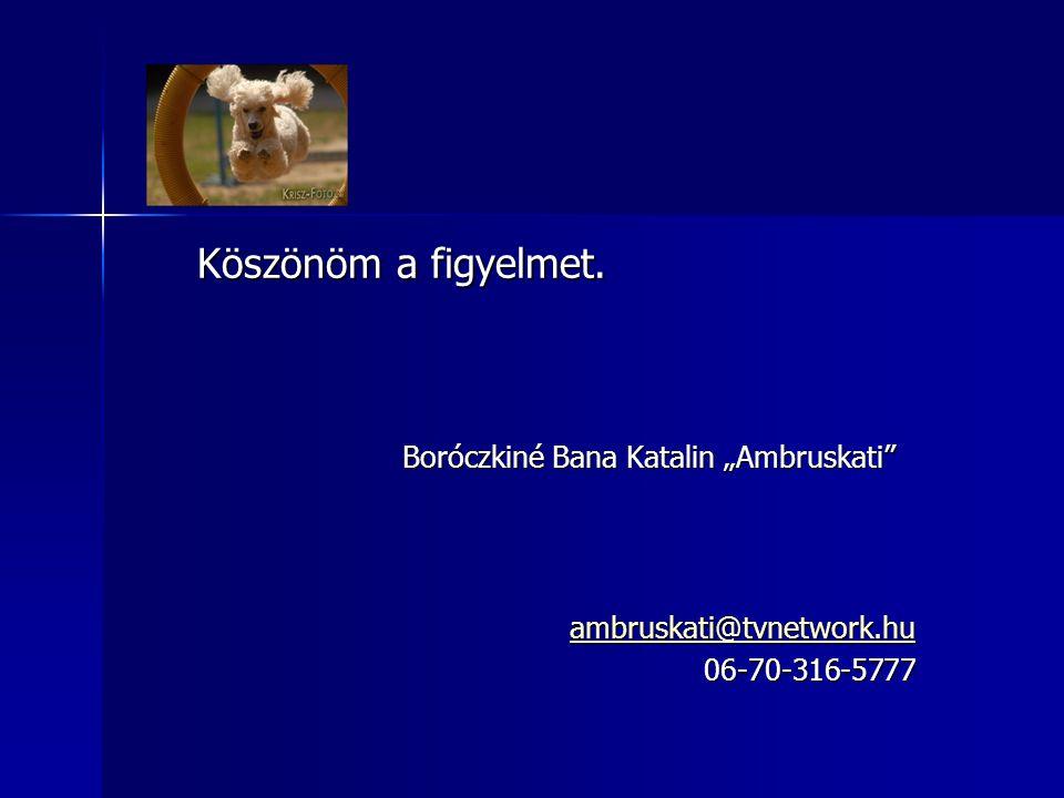 """Boróczkiné Bana Katalin """"Ambruskati"""