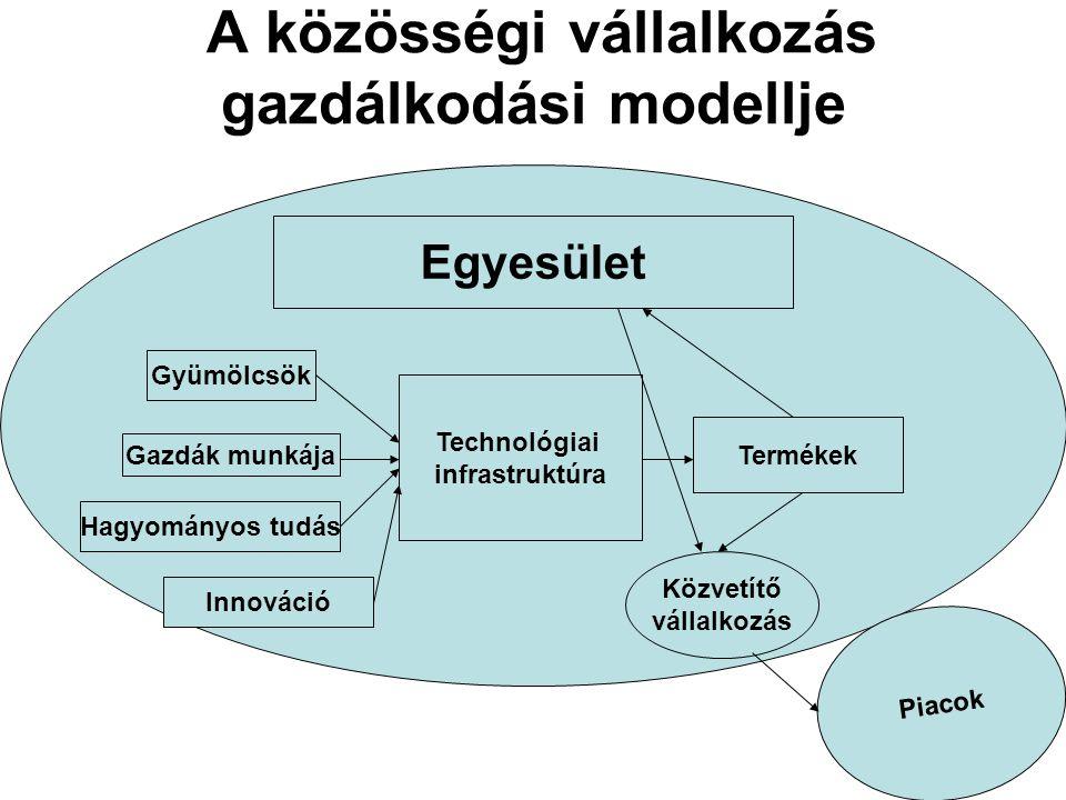 A közösségi vállalkozás gazdálkodási modellje