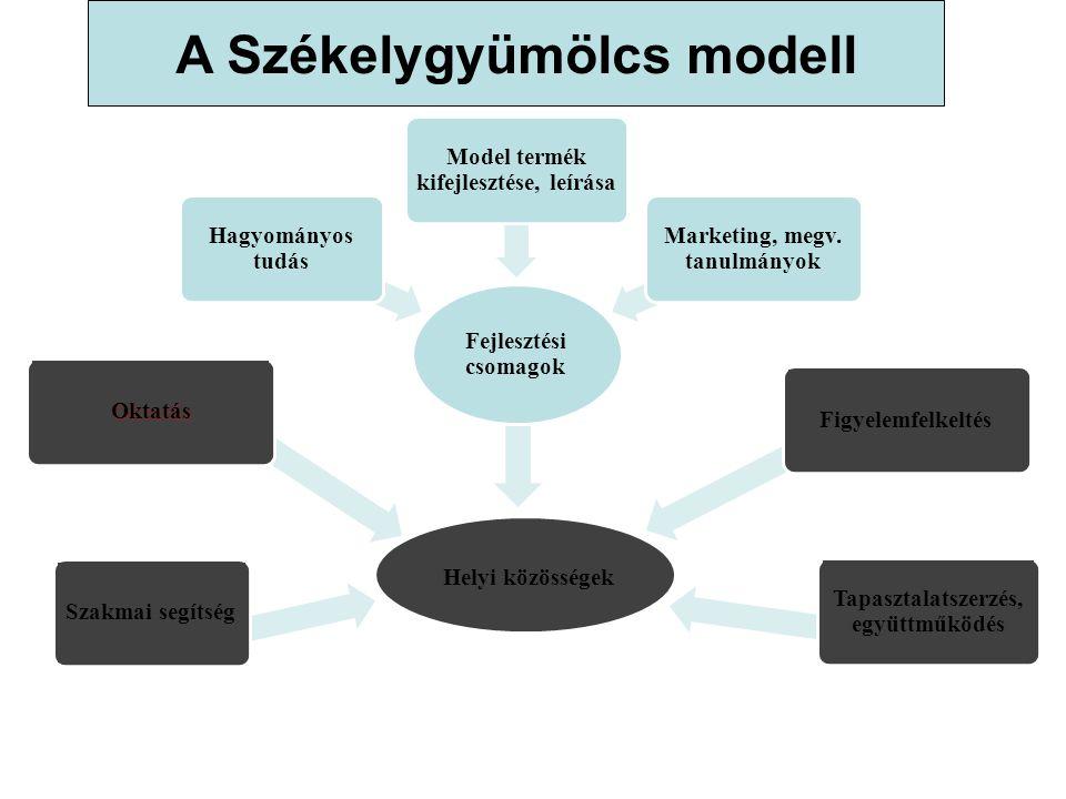 A Székelygyümölcs modell