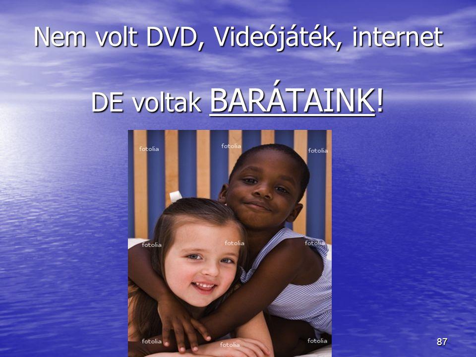 Nem volt DVD, Videójáték, internet