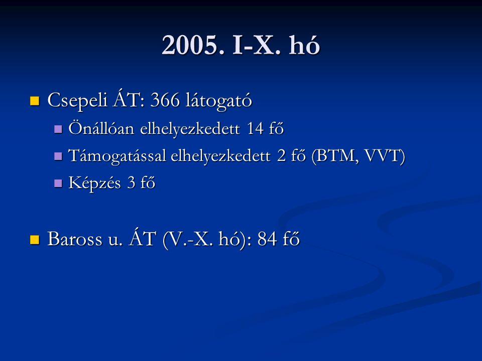 2005. I-X. hó Csepeli ÁT: 366 látogató Baross u. ÁT (V.-X. hó): 84 fő