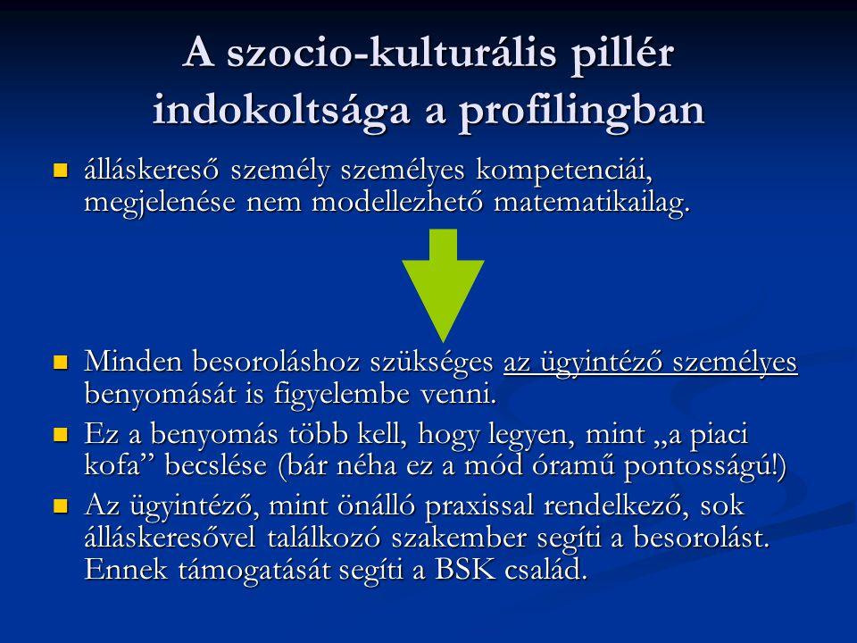 A szocio-kulturális pillér indokoltsága a profilingban
