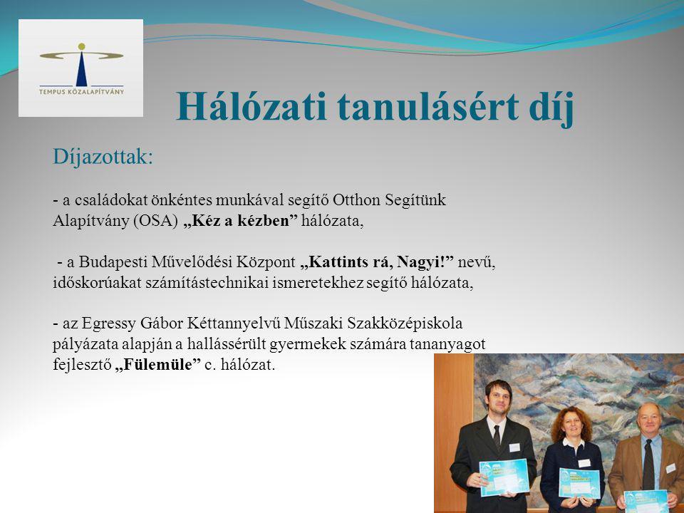 Hálózati tanulásért díj