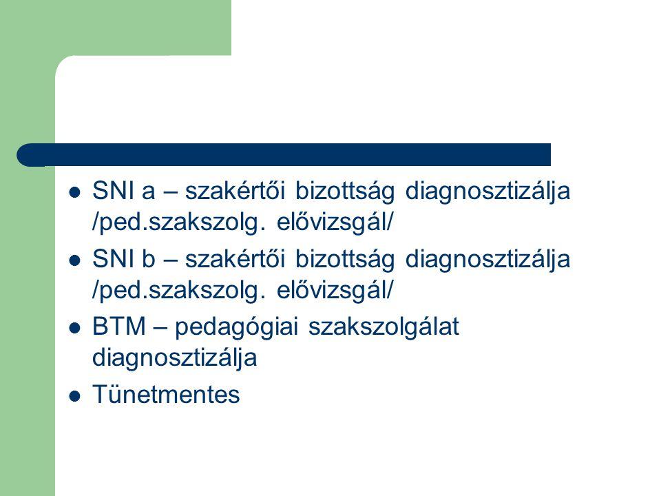 SNI a – szakértői bizottság diagnosztizálja /ped. szakszolg