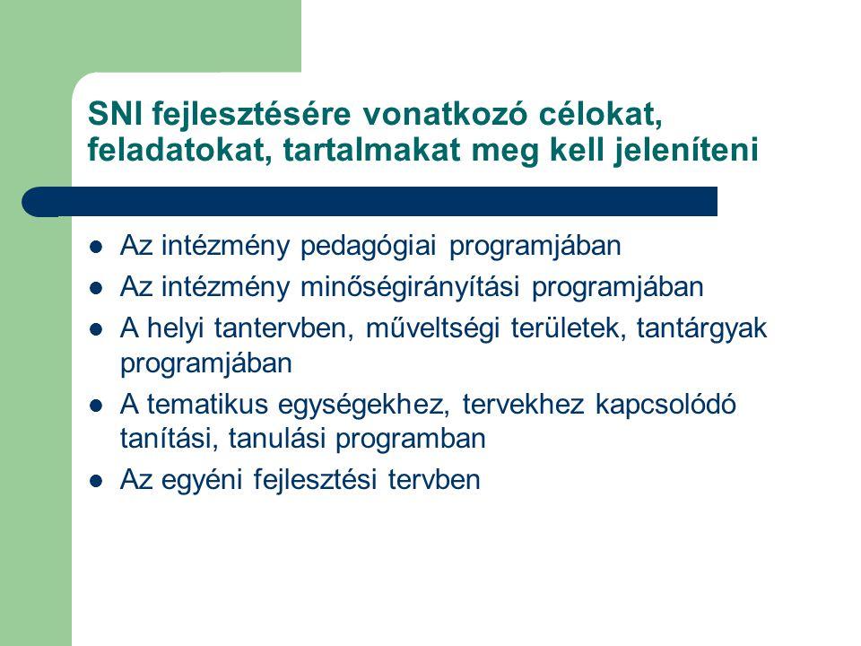 SNI fejlesztésére vonatkozó célokat, feladatokat, tartalmakat meg kell jeleníteni