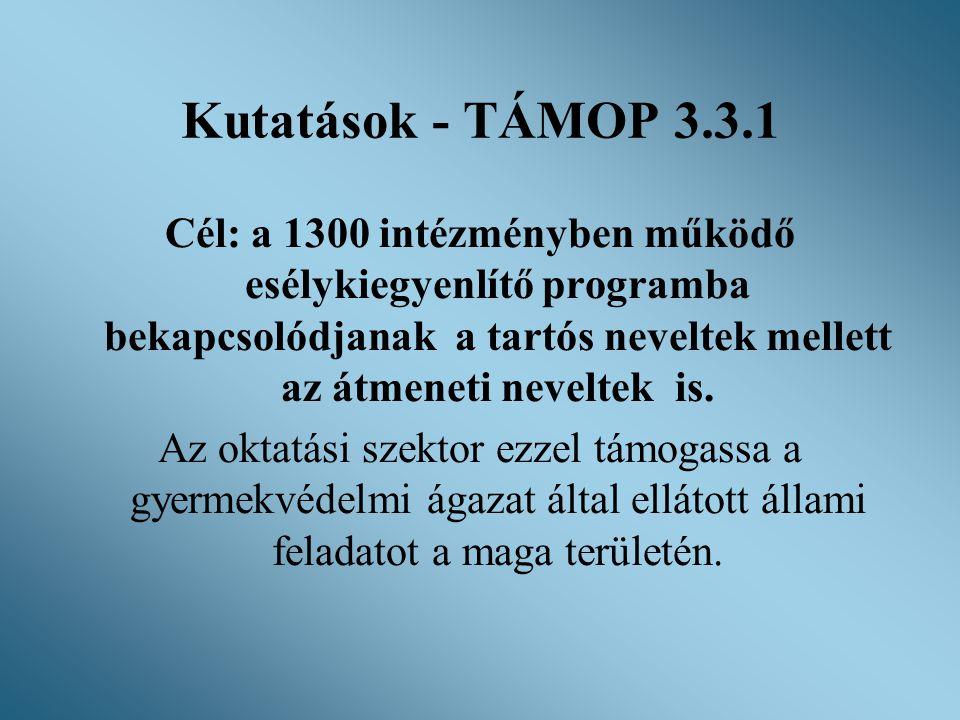 Kutatások - TÁMOP 3.3.1