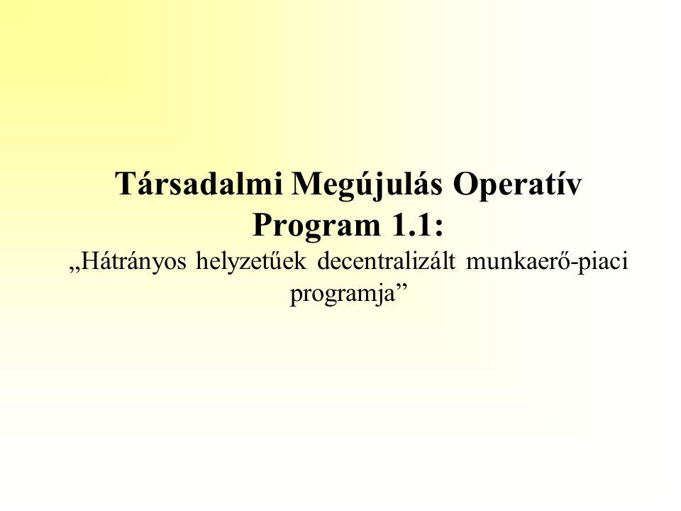 Társadalmi Megújulás Operatív Program 1