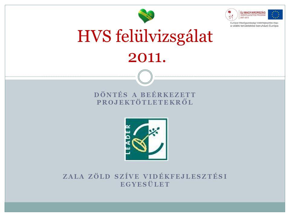 HVS felülvizsgálat 2011. Döntés a beérkezett projektötletekről