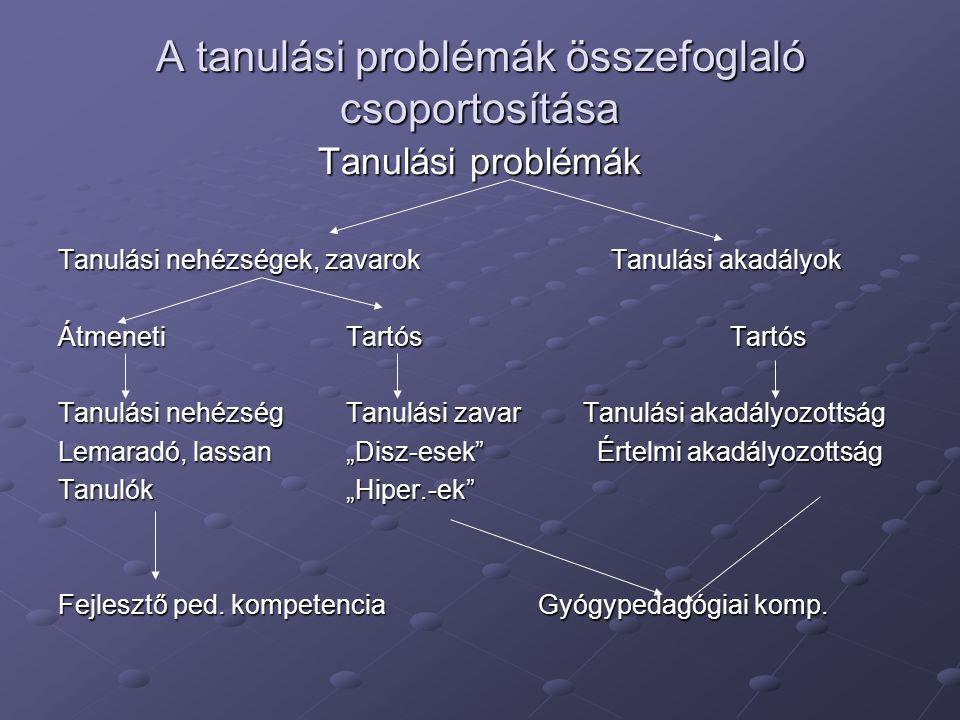 A tanulási problémák összefoglaló csoportosítása