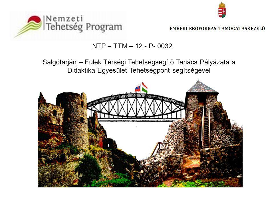 NTP – TTM – 12 - P- 0032 Salgótarján – Fülek Térségi Tehetségsegítő Tanács Pályázata a Didaktika Egyesület Tehetségpont segítségével.