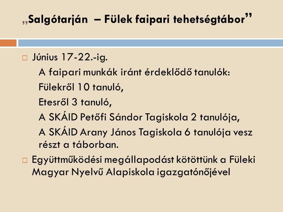 """""""Salgótarján – Fülek faipari tehetségtábor"""