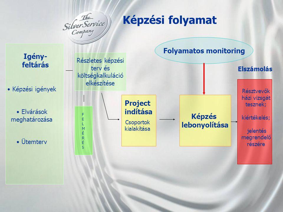 Folyamatos monitoring
