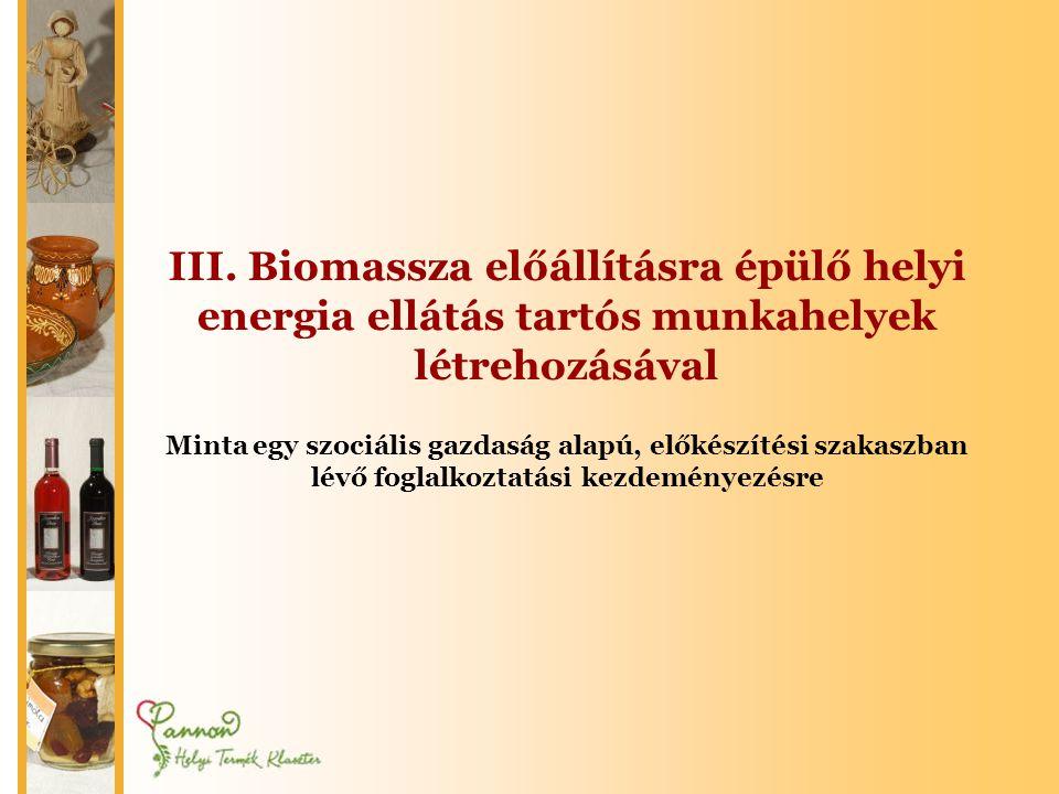 III. Biomassza előállításra épülő helyi energia ellátás tartós munkahelyek létrehozásával