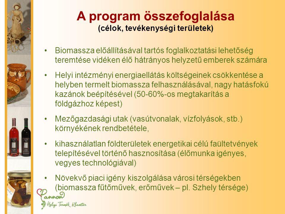 A program összefoglalása (célok, tevékenységi területek)