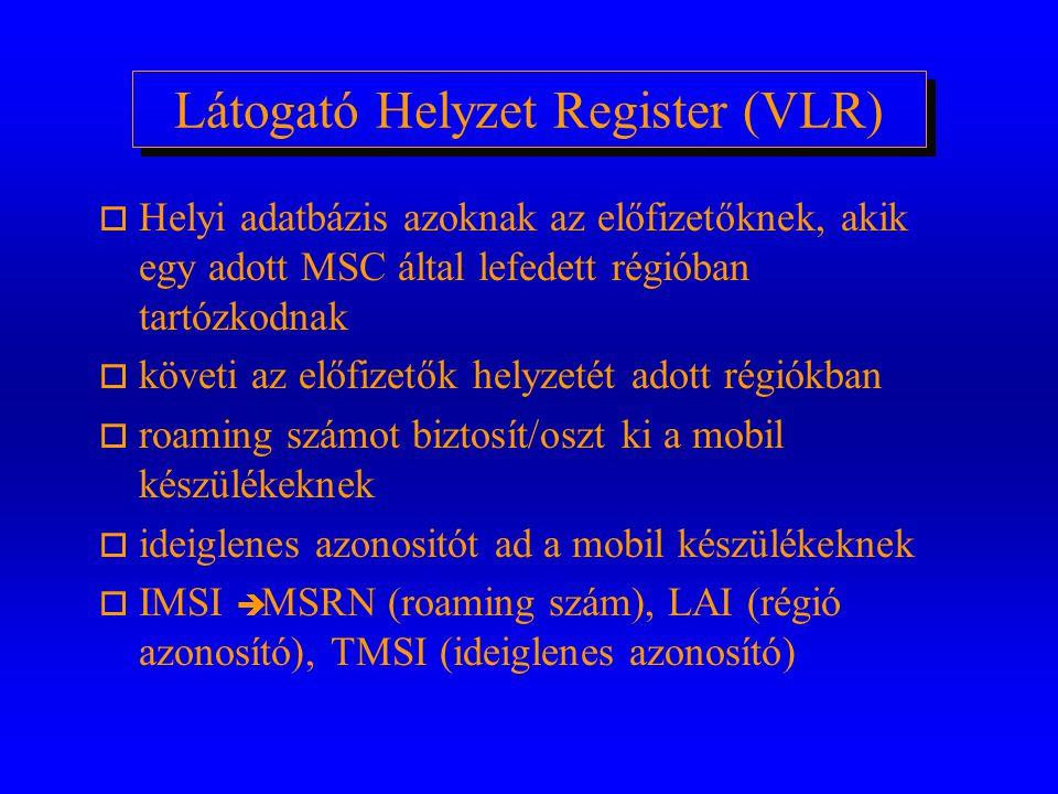 Látogató Helyzet Register (VLR)