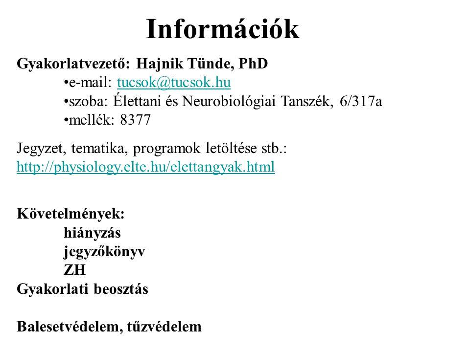 Információk Gyakorlatvezető: Hajnik Tünde, PhD