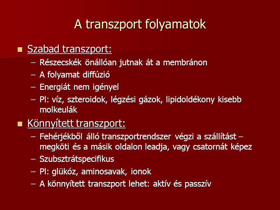 A transzport folyamatok