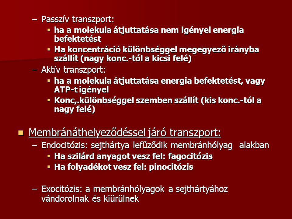 Membránáthelyeződéssel járó transzport: