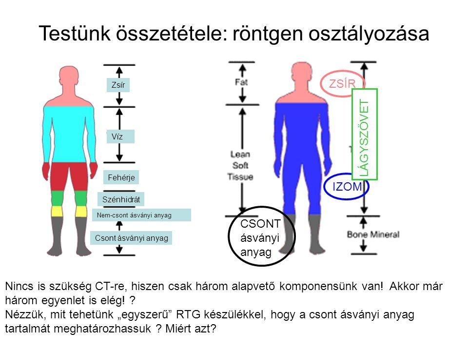 Testünk összetétele: röntgen osztályozása