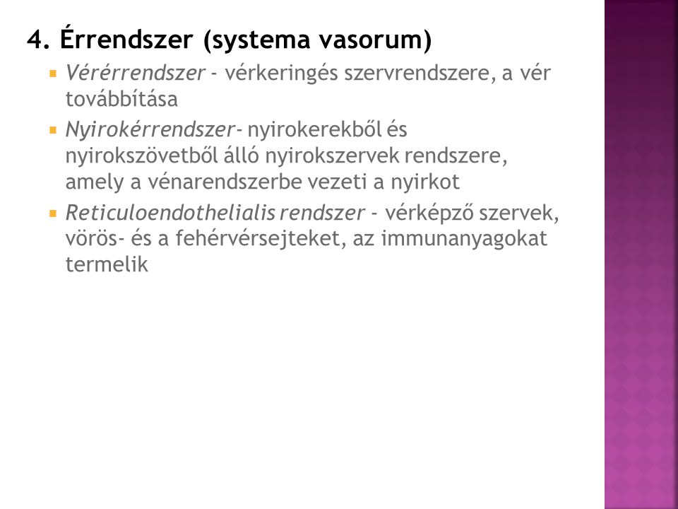 4. Érrendszer (systema vasorum)