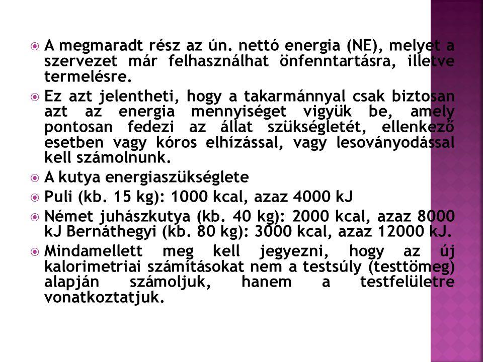 A megmaradt rész az ún. nettó energia (NE), melyet a szervezet már felhasználhat önfenntartásra, illetve termelésre.