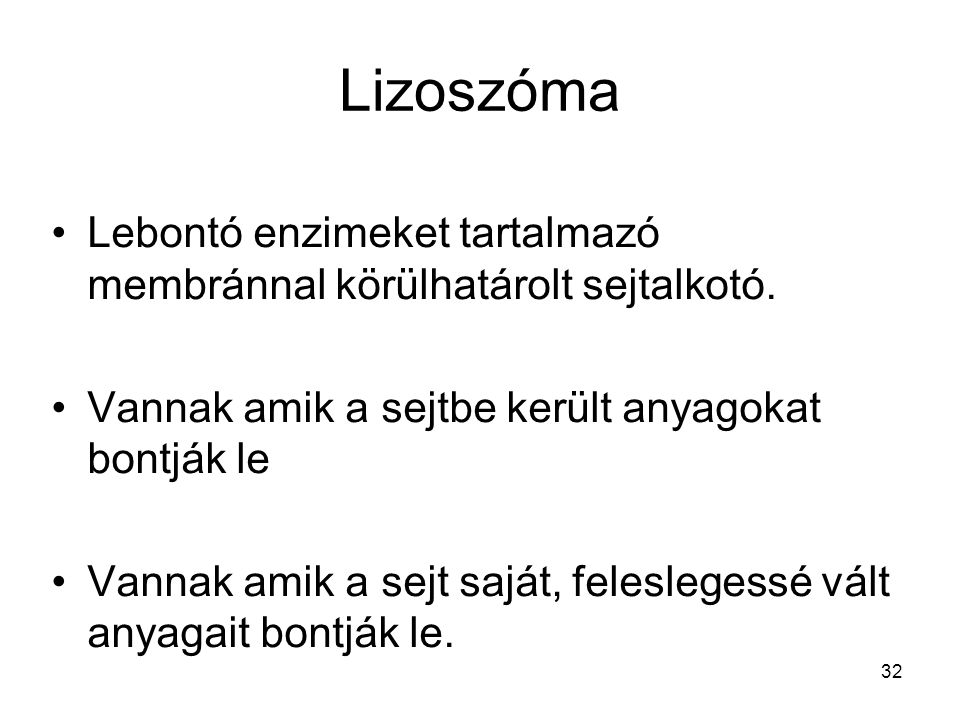 Lizoszóma Lebontó enzimeket tartalmazó membránnal körülhatárolt sejtalkotó. Vannak amik a sejtbe került anyagokat bontják le.
