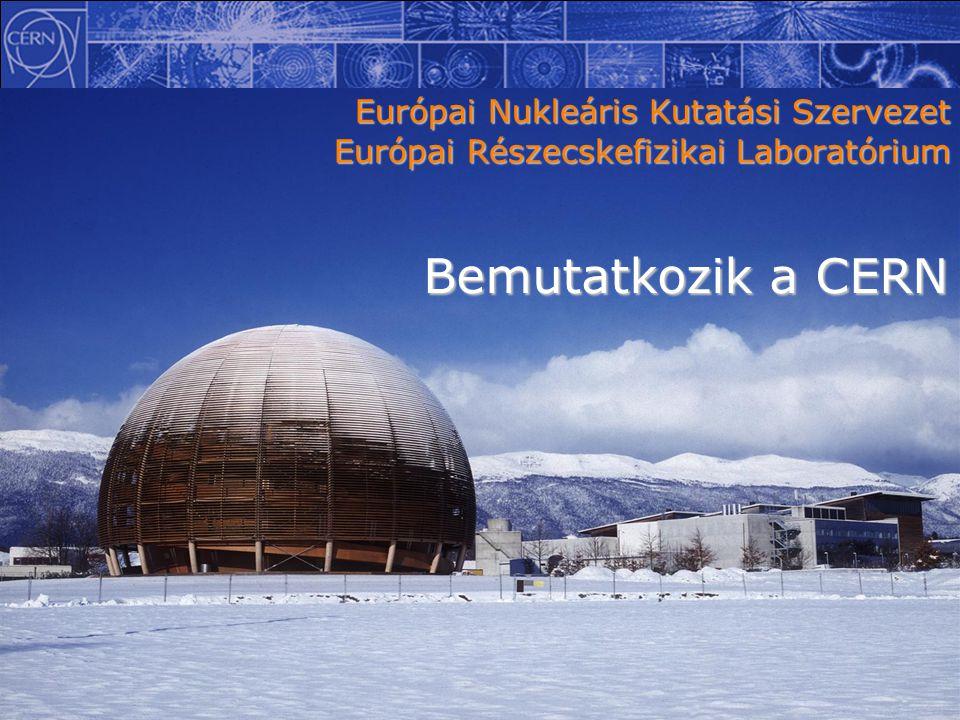 Európai Nukleáris Kutatási Szervezet Európai Részecskefizikai Laboratórium