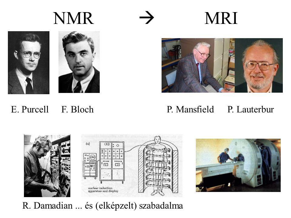 NMR  MRI E. Purcell F. Bloch P. Mansfield P. Lauterbur R. Damadian