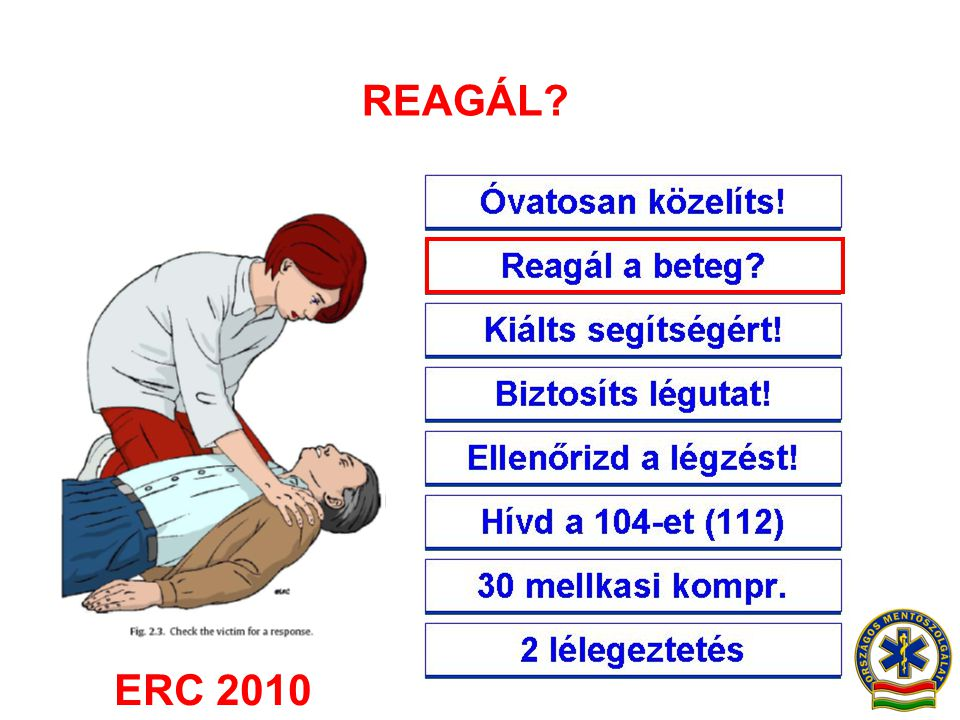 REAGÁL ERC 2010