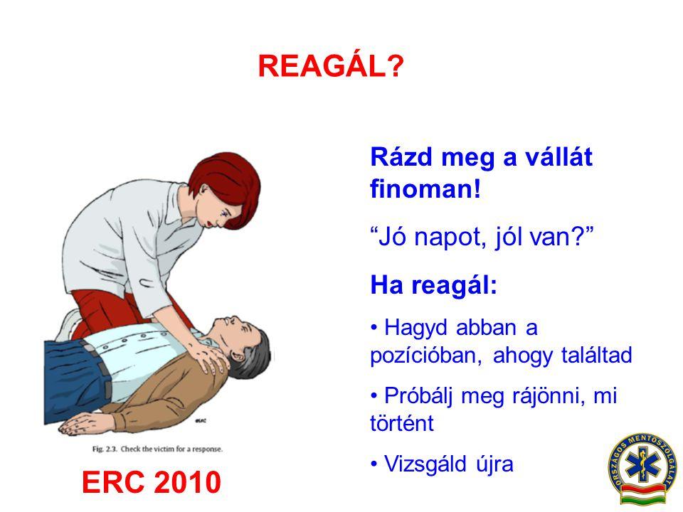 REAGÁL ERC 2010 Rázd meg a vállát finoman! Jó napot, jól van