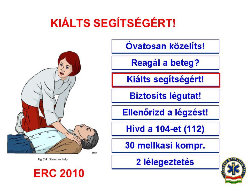 KIÁLTS SEGÍTSÉGÉRT! ERC 2010