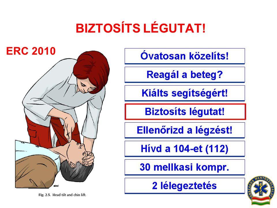 BIZTOSÍTS LÉGUTAT! ERC 2010 Óvatosan közelíts!