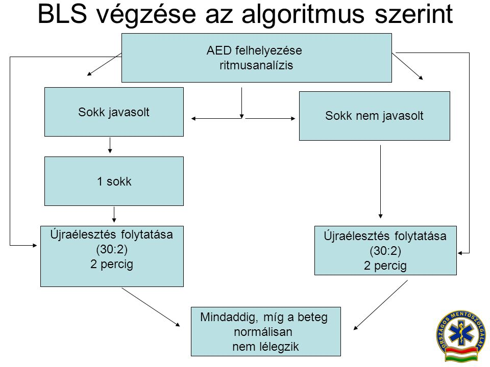 BLS végzése az algoritmus szerint