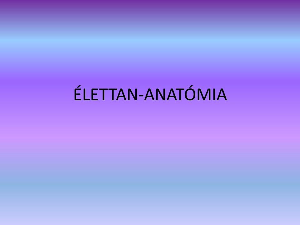 ÉLETTAN-ANATÓMIA