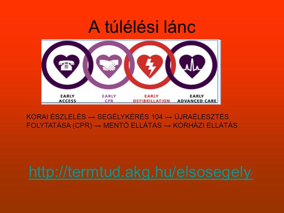 A túlélési lánc http://termtud.akg.hu/elsosegely/