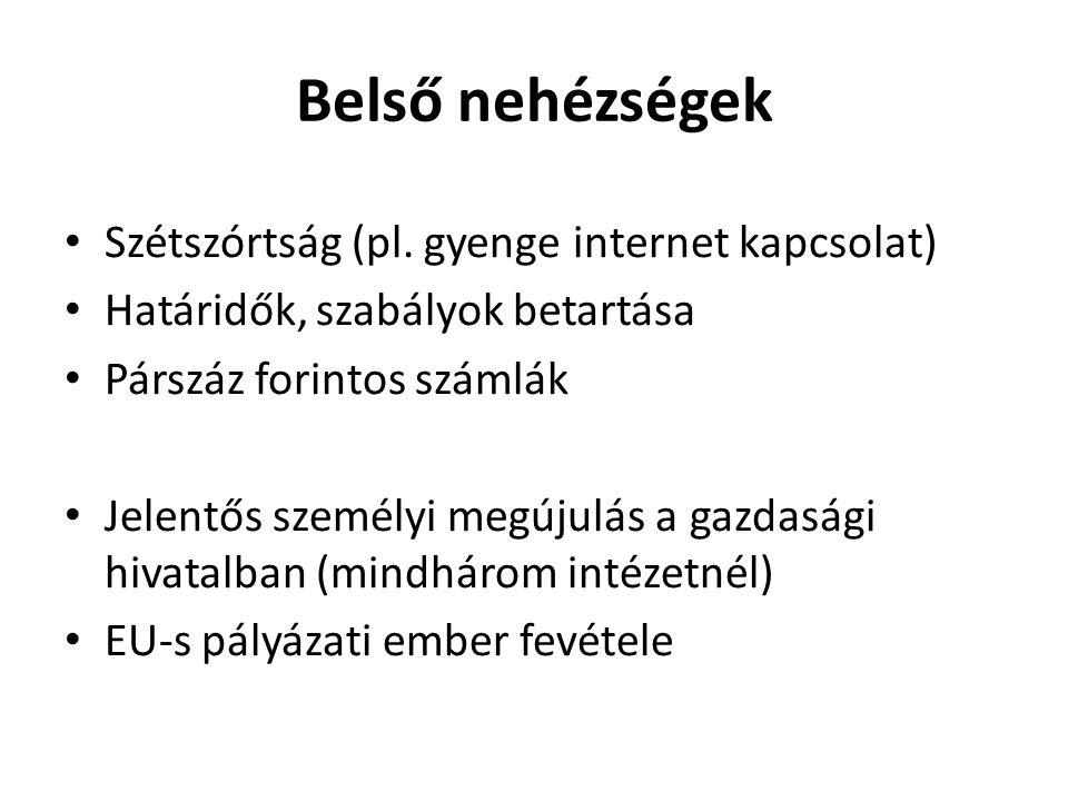 Belső nehézségek Szétszórtság (pl. gyenge internet kapcsolat)
