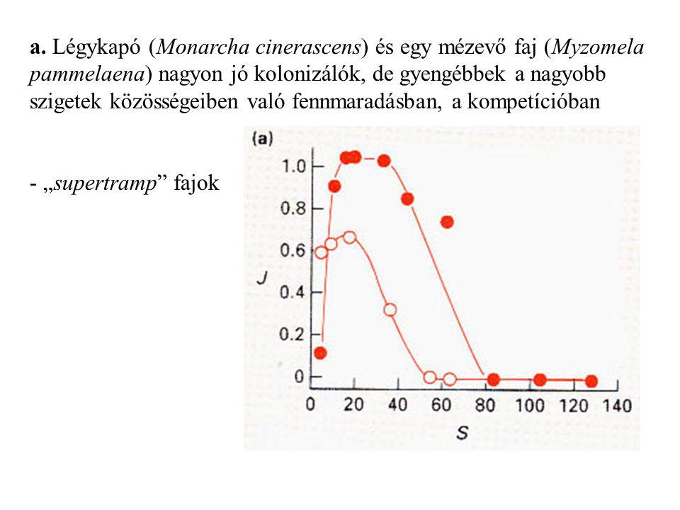 a. Légykapó (Monarcha cinerascens) és egy mézevő faj (Myzomela pammelaena) nagyon jó kolonizálók, de gyengébbek a nagyobb szigetek közösségeiben való fennmaradásban, a kompetícióban