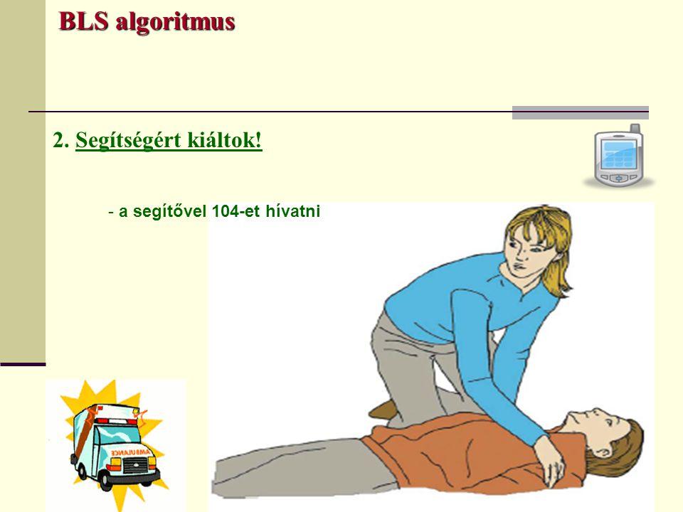 BLS algoritmus 2. Segítségért kiáltok! - a segítővel 104-et hívatni