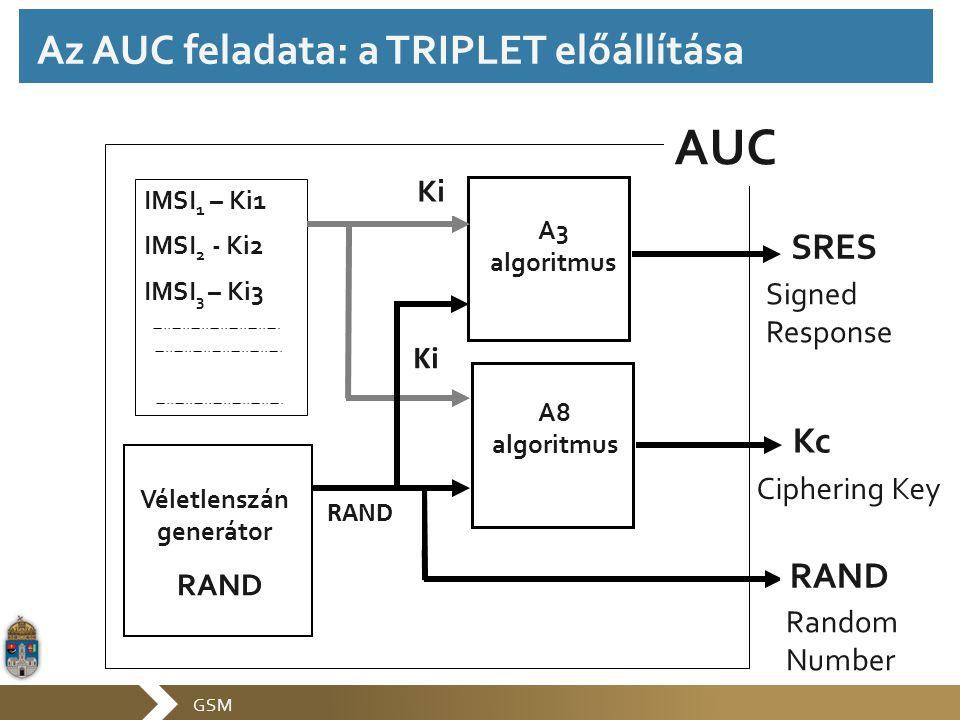 Az AUC feladata: a TRIPLET előállítása