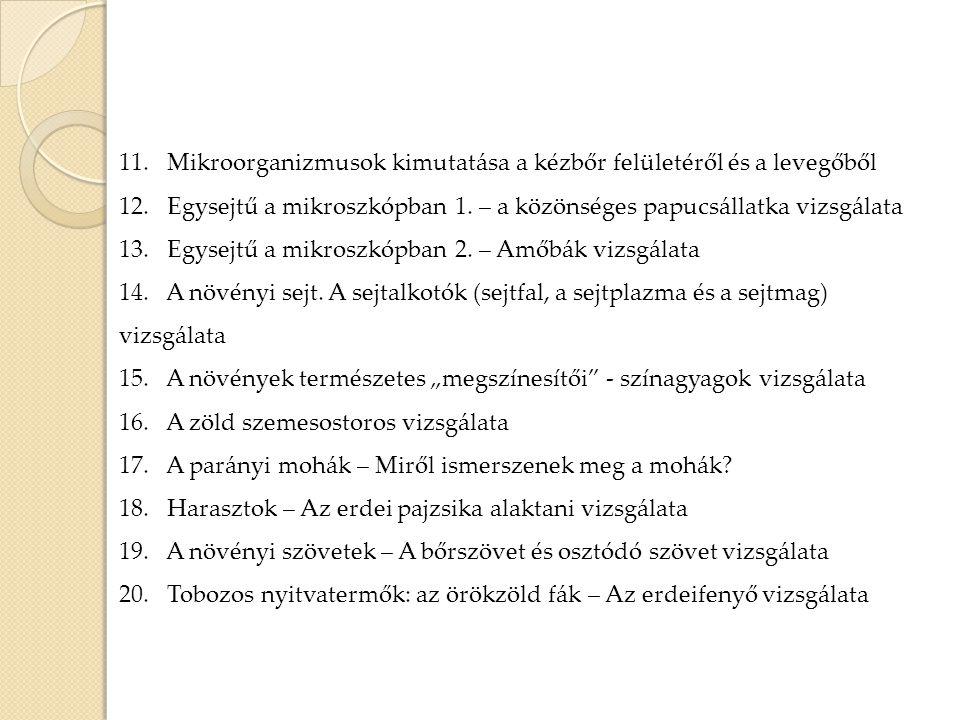 11. Mikroorganizmusok kimutatása a kézbőr felületéről és a levegőből