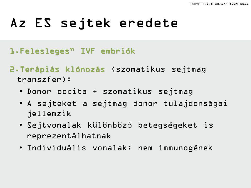 Az ES sejtek eredete Felesleges IVF embriók